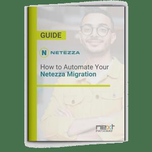 Netezza Migration Guide
