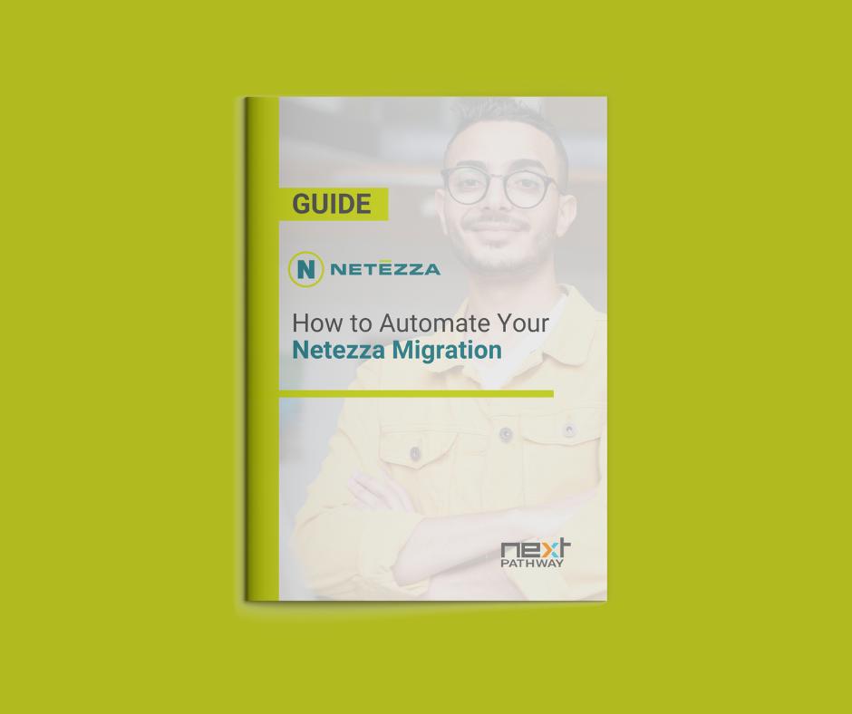 Netezza Guide